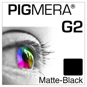 farbenwerk Pigmera G2 Flasche Matte-Black