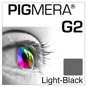 farbenwerk Pigmera G2 Flasche Light-Black