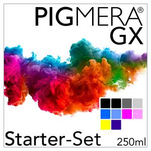Starter-Set mit Refillpatronen - Pigmera GX SC-P700 (ohne...