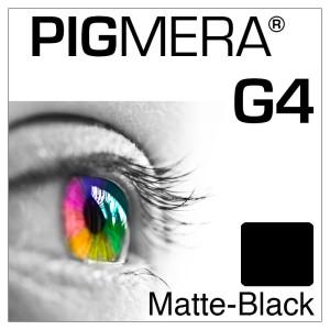 farbenwerk Pigmera G4 Flasche Matte-Black
