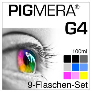 farbenwerk Pigmera G4 9-Bottle-Set 100ml