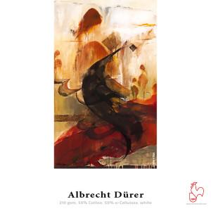 Hahnemühle Albrecht Dürer 210 25 Blatt DinA3