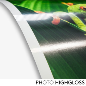 farbenwerk Photo HighGloss 260