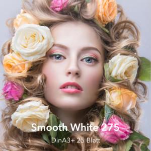 farbenwerk Fineart Smooth White 275 DinA3+ 25 Blatt